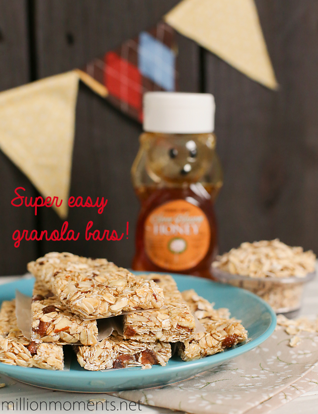 Easy no bake granola bar recipe with honey and fruit