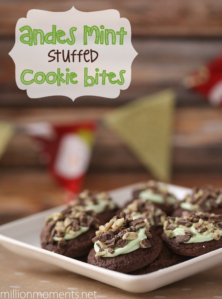 andes mint cookie bites