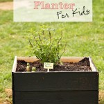 DIY Chalkboard Raised Bed Fruit Garden for Kids