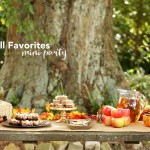 Fall Favorites Mini Party