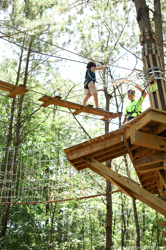 Go Ape Tree Top Adventure: Great Family Fun