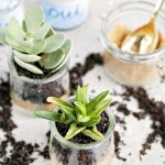Finding Me Time + Cute Cactus Crafts