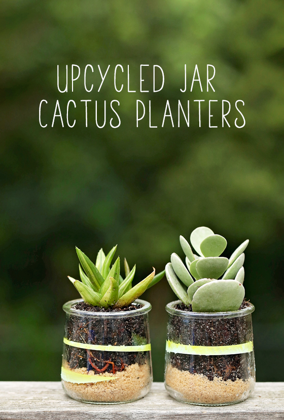 Upcycled Mini Cactus Planters   A Million Moments on