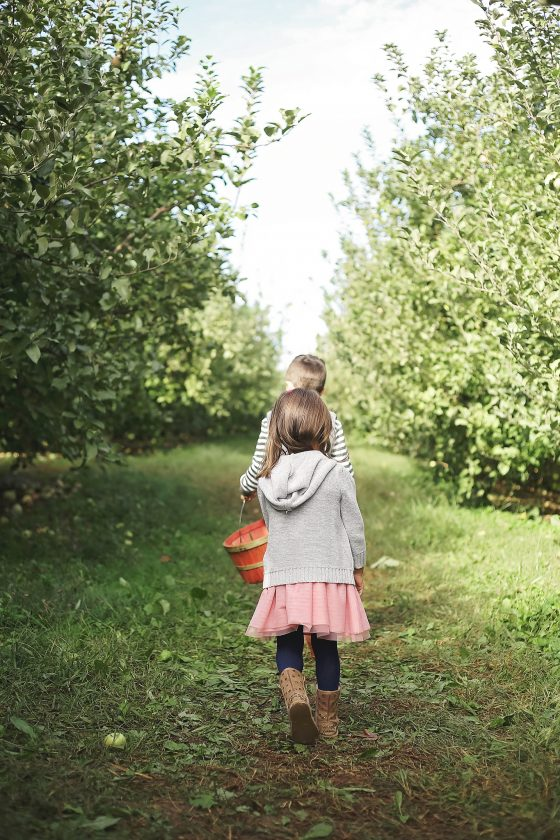 Apple Picking & Mini Pie Pops