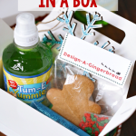 Holiday Party In A Box For Kids