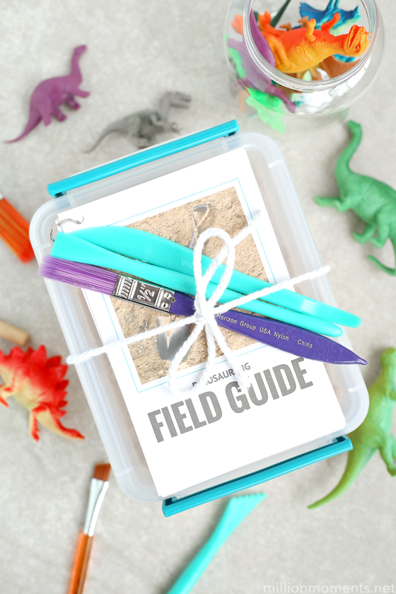 Fun Fossil Dig: A DIY Sensory Activity